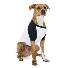 American Apparel Dogs ¾ Sleeve Dog Raglan T-Shirt (BB953)