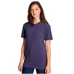 American Apparel Unisex Short Sleeve Crew Neck T-Shirt (BB401)